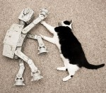 AT-AT and Cat