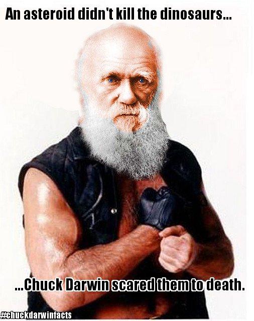 Chuck Darwin